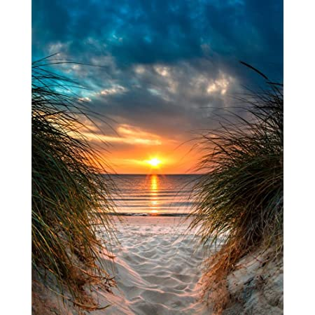 Wallmonkeys Fot 86628044 30 Wm361795 Personal Paradise On A Beautiful White Sand Beach At Sunset Peel And Stick Wall Decals 30 In H X 24 In W Medium Large Home Kitchen