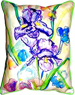 "Betsy Drake SN942 Two Irises Small Indoor/Outdoor Pillow, 11"" x14"""