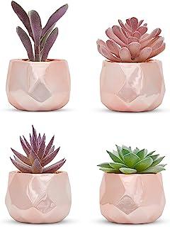Set of 4 Desk Plants in Rose Gold - Office Decor for Women, Indoor, Bookshelf, Bedroom, Mirror, Home and Desk Decor – Pink...