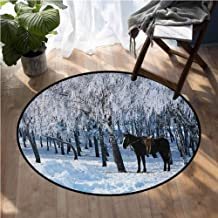 Equestrian Rugs for Sale Horse Between Trees in The Winter Forest Frozen Woods ICY Land Nature Picture Dining Table Rugs D48 Inch