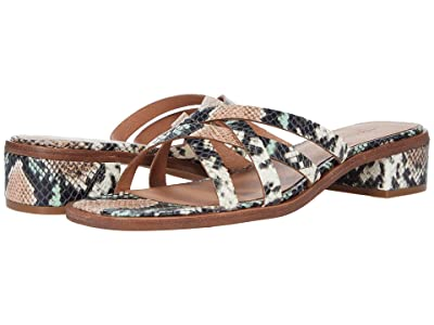Madewell Jeni Mule in Snake Embossed Leather