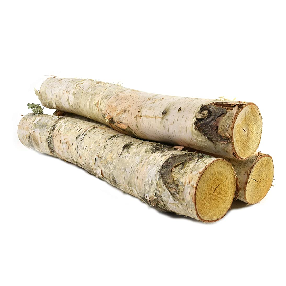 Birchwood LOGS - Excellent for Decorations, Holidays, Fireplaces or Patios. Adds a Warm, Rustic Touch to Any Occasion! by Woodlandia (3 Logs 18