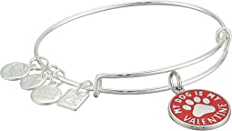 Charity By Design My Dog Is My Valentine Bangle Bracelet