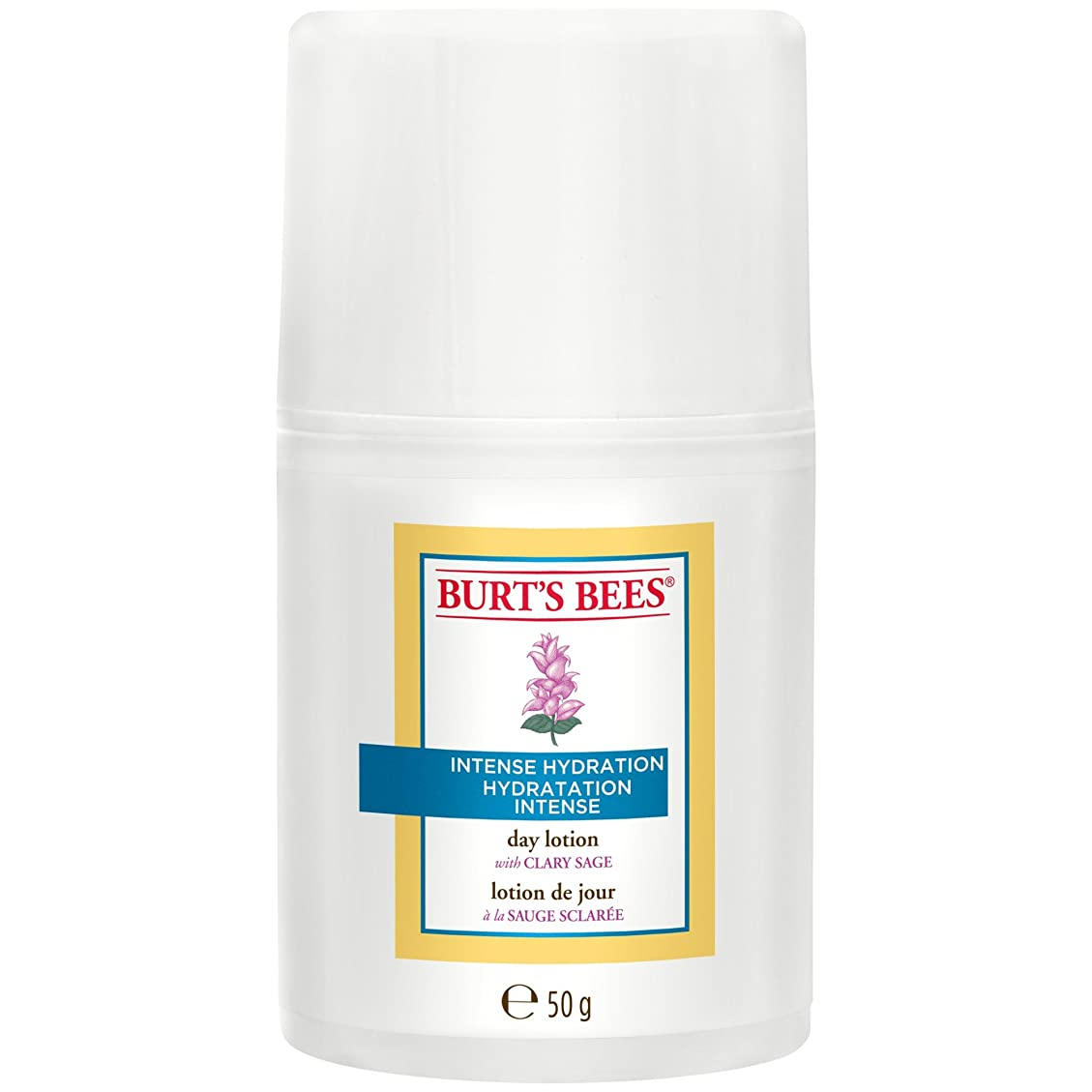コークス後世謝罪するバーツビー激しい水和日ローション50グラム (Burt's Bees) (x6) - Burt's Bees Intense Hydration Day Lotion 50g (Pack of 6) [並行輸入品]
