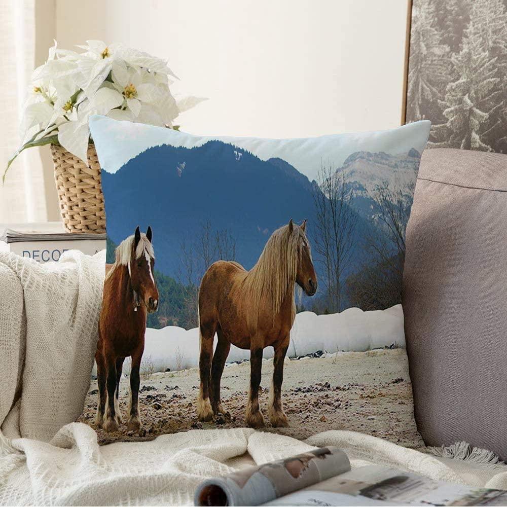 Amazon Com Decorative Pillow Soft Cover Horses Valley Bellver De Natural Cerdanya Catalonia Green Spain Nature Forest Parks Blue Outdoor Throw Pillow Covers Case For Couch Bed Sofa 18x18 Inch Home Kitchen