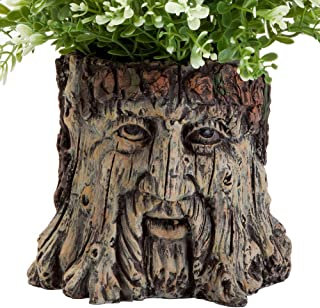 Bits and Pieces - Tree Face Garden Planter - Durable Polyresin Indoor-Outdoor Urn for Plants - Forest Inspired Whimsical Garden Décor