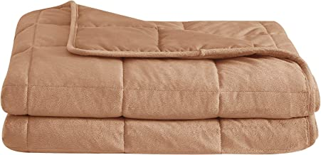 """puredown Cozy and Luxury Weighted Blanket for Adults, Youths Heavy Blanket with Glass Beads Flannel and Peach Skin Dual-Sided Cover 60""""x80"""" 15lbs Beige PD-WB19039-D"""