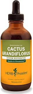 Herb Pharm Cactus Grandiflorus Liquid Extract for Cardiovascular Circulatory Support - 4 Ounce