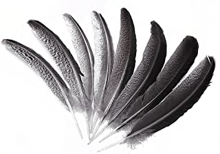 Eagle Feather,Hgshow 10pcs Imitation 10-12 inches Rare and Precious Feathers