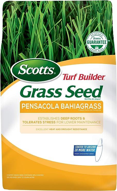 Scotts Turf Builder Grass Seed Pensacola Bahiagrass