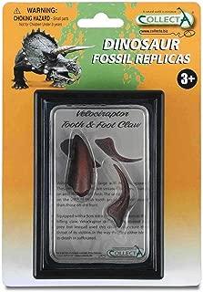 velociraptor claw authentic