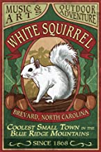 Brevard, North Carolina - White Squirrel Vintage Sign (12x18 Art Print, Wall Decor Travel Poster)