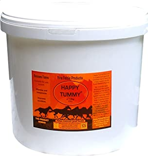Other Unisex's FET0020 FINE Fettle Products Happy Tummy, Clear, 7.8 kg
