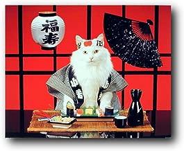 Sushi Cat (Japanese) Cute Kitten Art Print Poster (16x20)