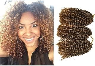 Marlibob Crochet Braids Hair Extensions 6 packs/lot 8inch kinky curly Synthetic Crochet Braiding Hair T1B/27
