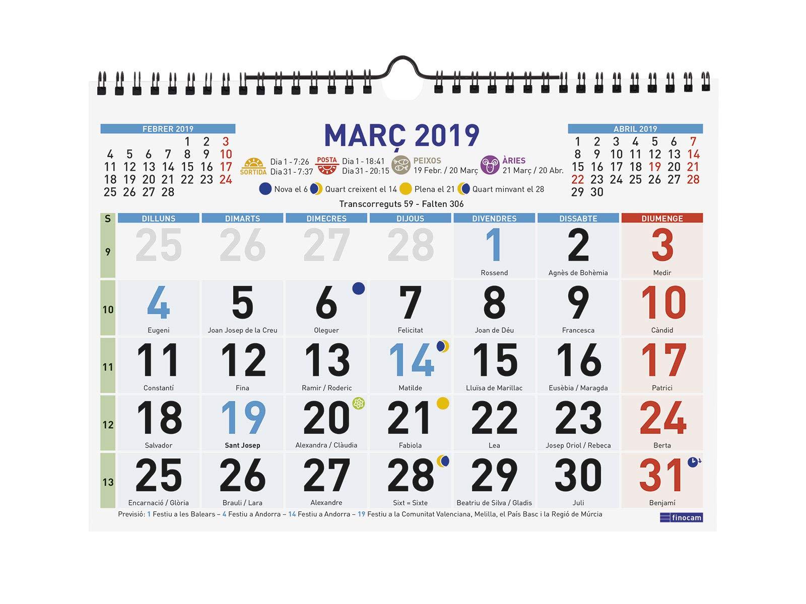 Finocam 781450019 - Calendario de pared 2019: Amazon.es: Oficina y ...