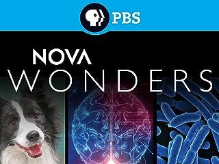NOVA Wonders Season 1