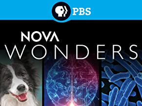 Best pbs nova marathon challenge Reviews