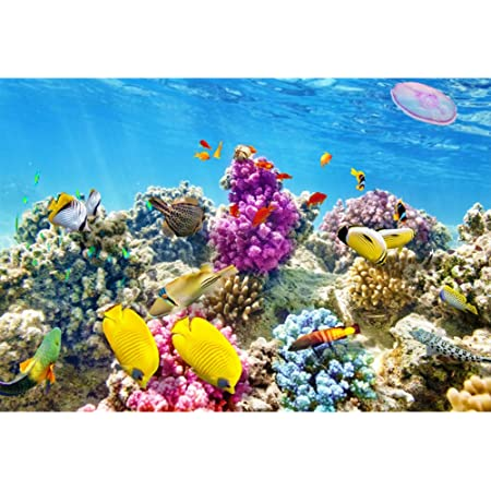 9x6ft Vinyl Photography Backdrop Cartoon Underwater World Sunlight Shark Fishes Reef Corals Background for Party Baby Kids Children Photo Shoot Birthday Backdrop Video Studio Props