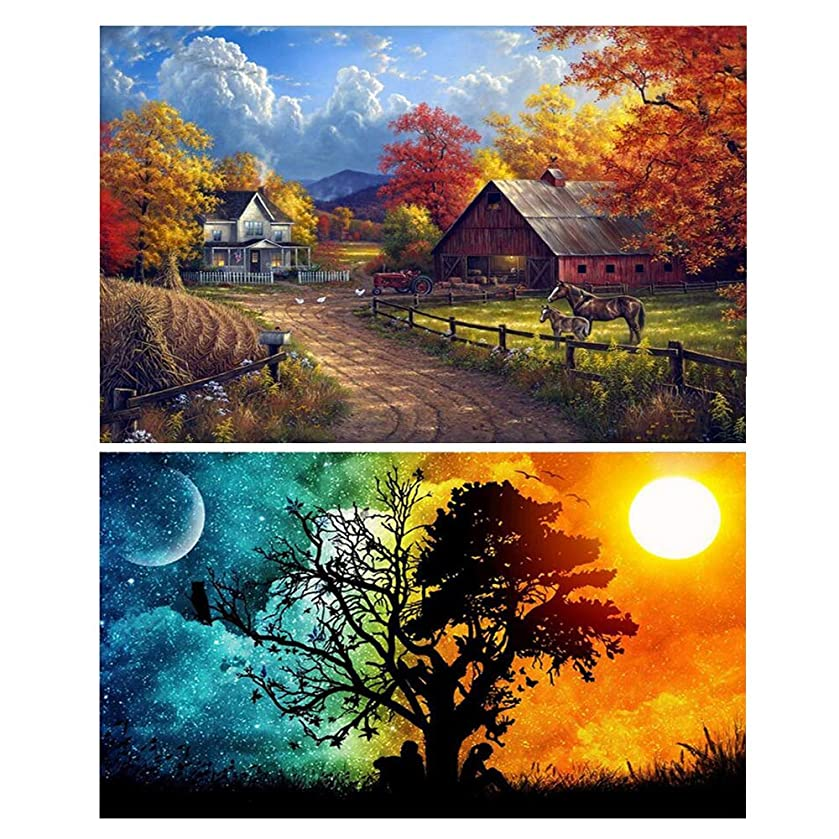 2 Pack DIY 5D Diamond Painting Kits Full Drill Diamond Paint by Number Kits Crafts & Sewing Cross Stitch for Adults Kids,Diamond Rhinestone Crystal Painting Kit Art Craft for Home Décor Wall Stickers