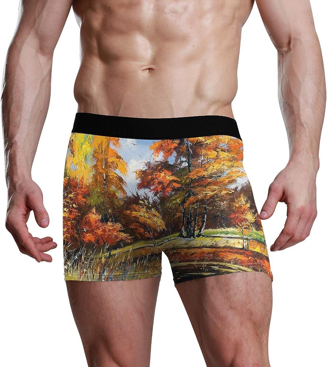 HangWang Mens Boxer Briefs Underwear Beautiful Fractal Miracle Trunks Underwear Short Leg Boys