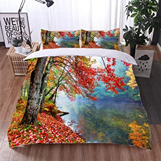 VROSELV-HOME 3 PCS King Size Comforter Set,Vibrant Autumn Colors Along a Small Stream in New Hampshire,Soft,Breathable,Hypoallergenic,Luxury Decor Bedding Set 1 Duvet Cover 2 Pillow