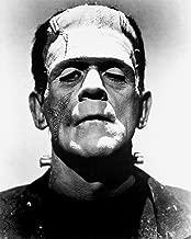Boris Karloff The Bride of Frankenstein Photo Art Hollywood Movie Photos 8x10