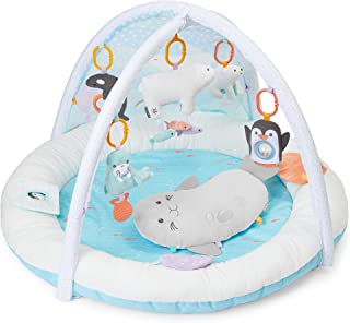 Carter's My Arctic Friends Baby Play Gym, Tummy Time