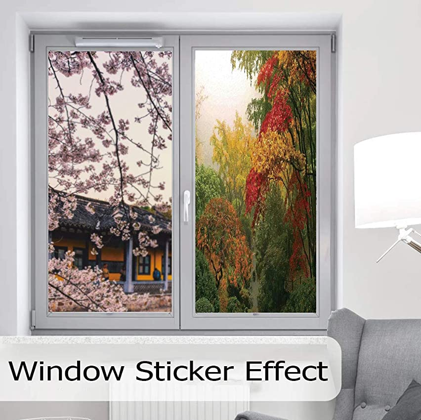 C COABALLA Static Cling Decorative Window Film,Country Home Decor,Suitable for Kitchen, Bedroom, Living Room,Maple Trees in The Fall at Portland Japanese,24''x48''