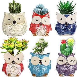 Owl Planter Pots,Ceramic Succulent Mini Flower Pots Container Bonsai Planters Pots with Hole Flower Plant Pots Garden Planters Pots,Home and Office Decoration Desktop Windowsill Gift-Set of 6
