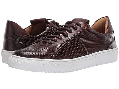 Massimo Matteo Perf Sneaker (Brown) Men