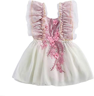 Fashion Infant Baby Girl Lace Dress 3D Flower Embroidery Ruffle Sleeveless Tutu Skirt Birthday Princess Mini Dress