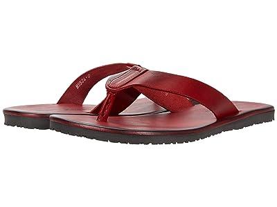 Massimo Matteo Leather Thong Sandal (Rosso) Men