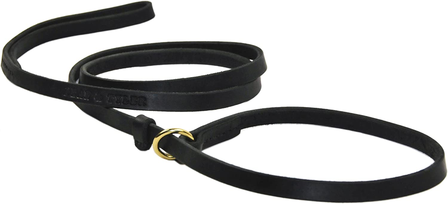 Dean and Tyler 2in1 DT Slip Leash with Solid Brass Hardware, 183 x 2 cm, Black