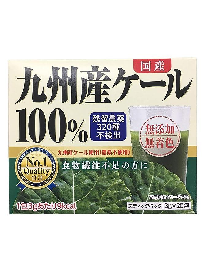 マトリックス動脈錆び新日配薬品 九州産ケール100% 粉末 3g×20包×2個