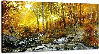Best autumn forest landscape Reviews