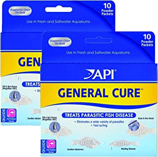 API Powder General Cure 20 pack