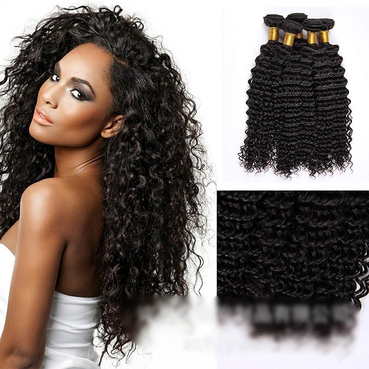 忠実な問い合わせる小売HOHYLLYA ブラジルの深い巻き毛の束100%未処理の人間の髪の毛の織り方自然な黒色の髪の拡張子(1バンドル、10
