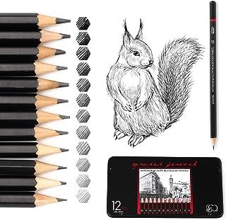 12Pcs Sketching Pencils, Professional Sketch Pencil Set with Pencil Case Graphite Art Pencils 8B, 7B, 6B, 5B, 4B, 3B, 2B, ...