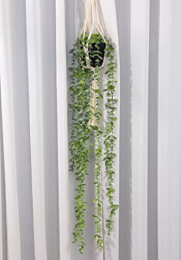 Asano Season Fake Plants Artificial Eucalyptus with Hanging Plant Hanger 2.6 FT Faux Greenery Vine Potted Plants in Black Pot