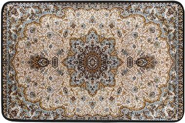 Non Slip Doormats Washable Door Mat,Colorful Ethnic Medallion Persian Indoor Outdoor Entrance Doormat Bathroom Floor Mats,23.