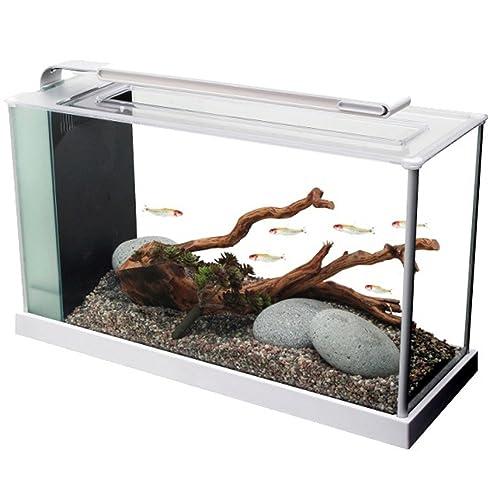 Nieuw Modern Aquarium: Amazon.com GW-84