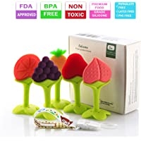 5 Pack Leedemore Soft Silicone Natural BPA Free Fruit Teethers Set with Pacifier Clip/Holder for Toddlers & Infants
