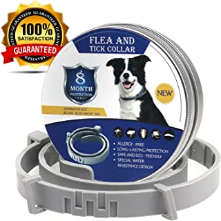 Dog Flea and Tick Collars For Large Dogs, for Cats Dogs Up to 8 Months Protection Health Hypoallergenic and Waterproof Adjustable Size Fits All Large Medium and Small Dog