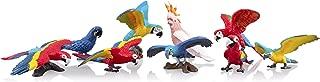 TOYMANY 9PCS Realistic Parrot Birds Figurines, 2-4