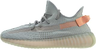 Yeezy Boost 350 V2 True Form - TRFRM/TRFRM/TRFRM Trainer Size 9.5 UK