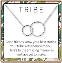 Best Friend Gift Necklace: BFF, Long Distance, Friends Forever, 2 Interlocking Circles