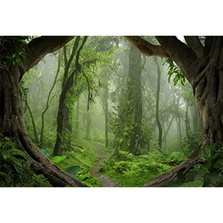 10x6.5ft Dreamy Jungle Forest Backdrop Polyester Fantastic Mossy Trees Wooden Trail Foggy Vibrant Wood Photography Background Baby 1st Birthday Party Banner Child Baby Portrait Shoot Nature Scenic