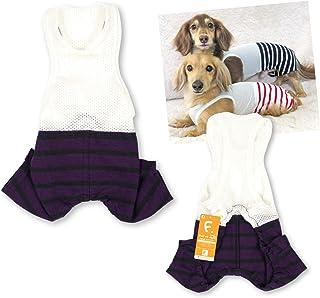 犬猫の服 full of vigor_メッシュインナー付天竺ボーダーパンツ_16/パープル_DML_小型犬・ダックス用
