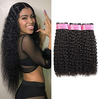FASHION QUEEN Hair Brazilian Water Wave 3 Bundles Wet and Wavy Human Hair Brazilian Virgin Human Hair Extensions (12 14 16 inch)
